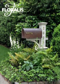 mailbox landscaping Mailbox Plantings b - landscape Mailbox Plants, Mailbox Flowers, Mailbox Garden, Mailbox Landscaping, Mulch Landscaping, Lawn And Garden, Landscaping Ideas, Fall Mailbox, Fresco
