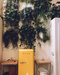 Collect an Idea of Calm & Fresh Bohemian Chic Decor Plants Ideas Number 48 Bohemian decorating isn't only beautiful to check at, it provides a whimsical ambiance that may also. Küchen Design, House Design, Bohemian Chic Decor, Bohemian Decorating, Bohemian Homes, Uo Home, Dream Apartment, Mellow Yellow, Humble Abode