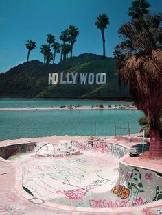 Hollywood dog bowl