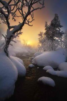 Sunrise in winter We have a beautiful world. Winter Magic, Winter Snow, Winter Light, Long Winter, Winter White, All Nature, Amazing Nature, Nature Images, Beautiful Sunset