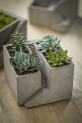 Cement Architectural Plant Cube Planter III - Set of 2