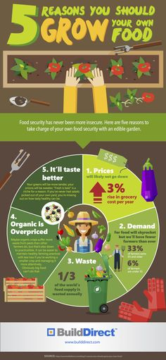5 Reasons To Grow Your Own Food: An Infographic Read more: http://www.builddirect.com/blog/5-reasons-to-grow-your-own-food-an-infographic/