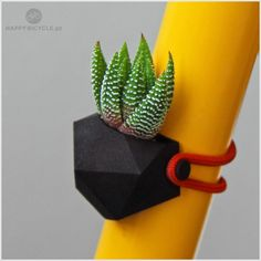 BIKE PLANTER - GEOMETRICO via HAPPY BICYCLE STORE. Click on the image to see more!