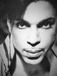 ■Stunning ■ Prince ■