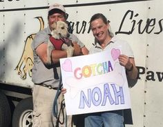 Every other week, Greg Mahle packs up his specially outfitted big rig and heads thousands of miles south from his home in Ohio. Up to 90 dogs, saved from high-kill shelters and the streets, await Mahle to take them on the …