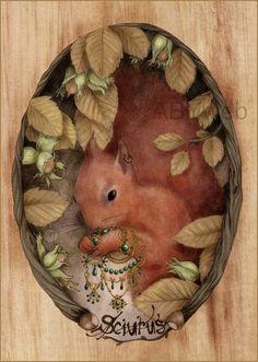 ecureuil roux animal dessin