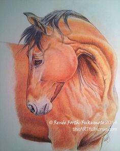 Horse Art: Coloured (colored) Pencil painting or drawing of a bay Standardbred horse. Original art by © Renee Forth-Fukumoto 2014 of www.theArtfulHorse.com