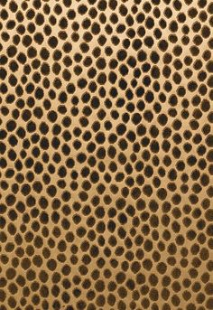 62820 Cheetah Velvet Brun by F Schumacher Fabric
