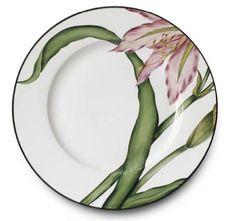 Amaryllis Dinner Plate Albert Pinto