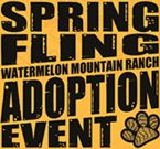 Spring Fling, 4/30/17, Marble Brewery