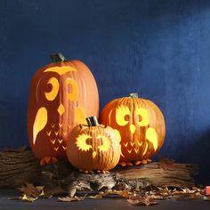 Kürbisse schnitzen, drei Uhus, coole Halloween Dekoration, DIY Ideen für Kinder und Erwachsene