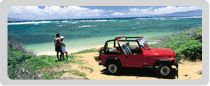 Renting a jeep on the Island of Lanai!    For more information about Lanai, or any of the Hawaiian islands contact the Hawaiian specialists at Travel to Maui.  http://www.traveltomaui.net