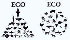 Funny pictures about Ego Vs. Oh, and cool pics about Ego Vs. Also, Ego Vs.