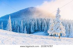 203874787 Winter Road, Winter Snow, Europe Centrale, Destinations, Snow Covered Trees, Voyage Europe, Blog Voyage, Photo Craft, Winter Landscape