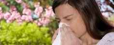 Alergia X Plantas - Plantas que Causam Alergias  A alergia a plantas é um problema para quem aprecia jardinagem ou trabalha no ramo. Muitas pessoas podem ter reações alérgicas devido a pólen, com problemas respiratórios ou dermatites de contato.  Saiba mais a seguir.   Rinite Alérgica Causada por Plantas É ... - http://www.doutorvirtual.com.br/ecoblog/2017/01/10/alergia-x-plantas/