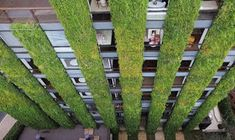 Самые красивые дома: Вертикальное озеленение. Зеленые стены: живые стены и зеленые фасады.