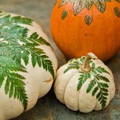 Terrain How-To: Botanical Pumpkins #shopterrain