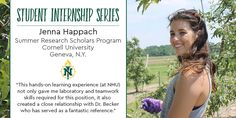 Research Scholar, Student Jobs, Summer Jobs, Cornell University, Hands On Learning, Northern Michigan, Teamwork, Positivity, Relationship