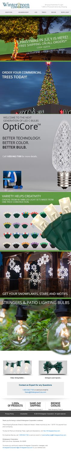 Wintergreen Corporation - Christmas In July Christmas In July, Christmas Lights, How To Find Out, Commercial, Bulb, Design, Christmas Fairy Lights, Onions