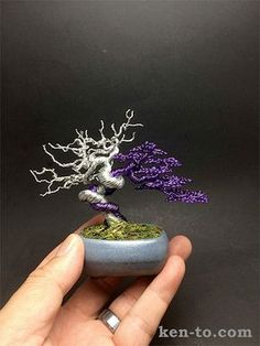 Ken To Wire Bonsai Tree ... he does beautiful work, this link is from toxel.com, a design/inspiration site with a lot of pics of these bonsai, each more spectacular than the last.