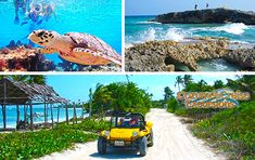 Discover Cozumel with our Private Cozumel Dune Buggy Tour