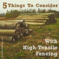 5 Things To Consider With High-Tensile Fencing. -- Two years in the making.  We've dreamed. We've imagined. Guys, it's finally gonna happen. We are getting our very own milking cow! As excited as we are to talk about the expansion of our homestead, the milking cow isn't what this post is about. Well, not really.  This fall we've been busy reclaim...