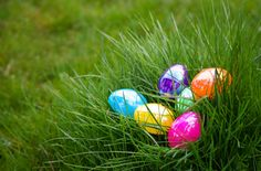 Happy days it's the Easter holidays! Are you stuck for ideas for Easter activities? Not to worry, as we have complied the Mykidstime.ie 50 Easter Activities for Kids. Easter Egg Stuffers, Easter Activities For Kids, Kids Fun, Plastic Eggs, Plastic Grass, Palm Sunday, Egg And I, Easter Colors, Spring