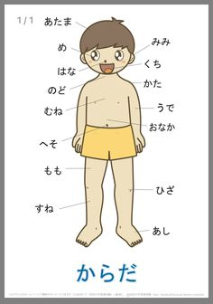 Japanese body parts names (front) in hiragana 言葉の絵カード「体(1)」 Japanese Language Lessons, Japanese Language Proficiency Test, French Language Learning, Korean Language, Teaching Spanish, Spanish Language, Sign Language, Learn Japanese Words, Japanese Phrases