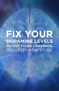 Fix Your Dopamine Levels to Cut Food Cravings, Suggests New Study
