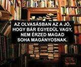 Pontosan igaz I Love Books, Books To Read, Forever Book, Minden, Book Lovers, Book Worms, Favorite Quotes, Einstein, Quotations