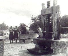 Eski Zeytin Yağı Çıkarma Değirmeni... (Muhtemelen Kıbrıs' a ait bir yerleşim yeri) Strange Photos, Rare Photos, Old Pictures, Old Photos, North Cyprus, Travel Memories, Cool Landscapes, Istanbul, Europe