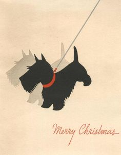 Scottish Terrier and his Shadow vintage Christmas card  Scottie dog!