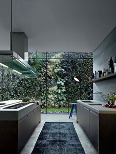 Kitchen and green wall - amazing view, black kitchen [ Wainscotingamerica.com ] #kitchen #wainscoting #design