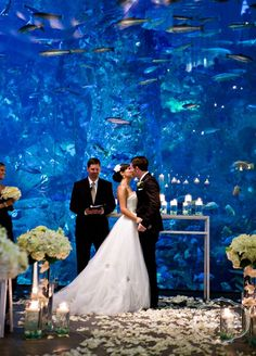 What a fabulous idea, An Aquarium for a wedding background!
