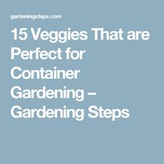 15 Veggies That are Perfect for Container Gardening – Gardening Steps