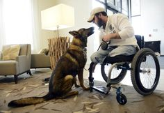 K-9 companion Jasper lends helpin paw to wounded veteran Corporal Jesse Murphree.
