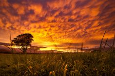 Remarkable sky over West Kilbride, Scotland.