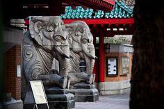Elephant Gate, Berlin, on The Modern Nomad blog