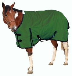 Royal Hamilton WB-1200D-HG-S Turnout Horse Blanket Hunter Green with Black Trim, 75-Inch, Small