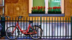 Bike against railings Amsterdam Moyan Brenn