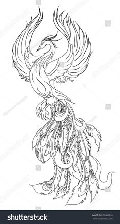 Phoenix Fire bird illustration and character design.Hand drawn Phoenix tattoo Japanese and Chinese style,Legend of the Firebird is Russian fairy tales and it is creature from Slavic folklore. Phoenix Tattoo Feminine, Phoenix Bird Tattoos, Phoenix Design, Phoenix Tattoo Design, Bird Drawings, Tattoo Drawings, Japanese Phoenix Tattoo, Phoenix Chinese, Tattoo Japanese