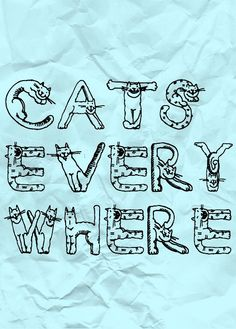 Cats Everywhere!