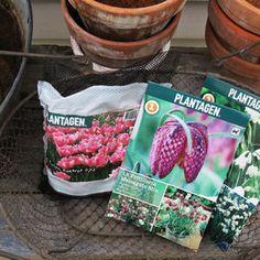 Inspirasjon – Min Oase Trapper, Snack Recipes, Snacks, Diy Wreath, Lunch Box, Planters, Chips, Winter, Garden