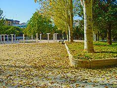 otoño en el parque pignatelli - zaragoza - españa