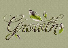 Crecimiento/Growth