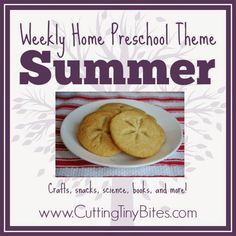 Summer Theme- Weekly Home Preschool from Cutting Tiny Bites.  Crafts, snacks, picture books, math, science, and more!  Perfect set of ideas for one week of home preschool!