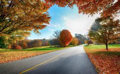 country road autumn computer images