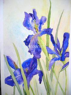 Japanese Irises by Linda Spollen Haile