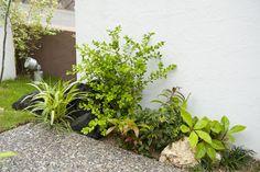 小さな植栽にもこだわりを。