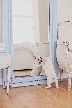 Pretty frenchy mirror